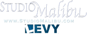 Studio Malibu Levy Entertainment Logo Clear And Blue